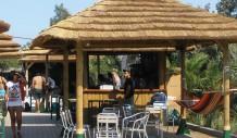 Ελαφόνησος Bar